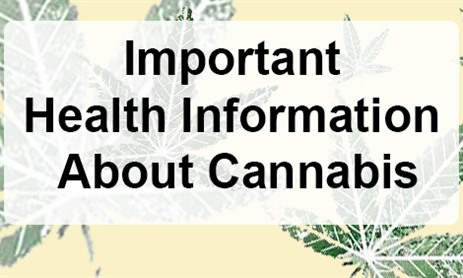 Information About Cannabis